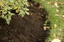 silty soils, silt based soils, Holganix, soil structure