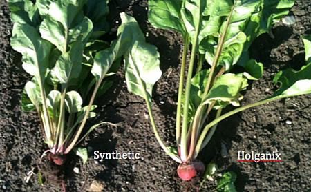 Holganix Agriculture