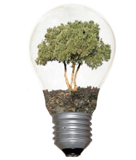 Holganix Plant