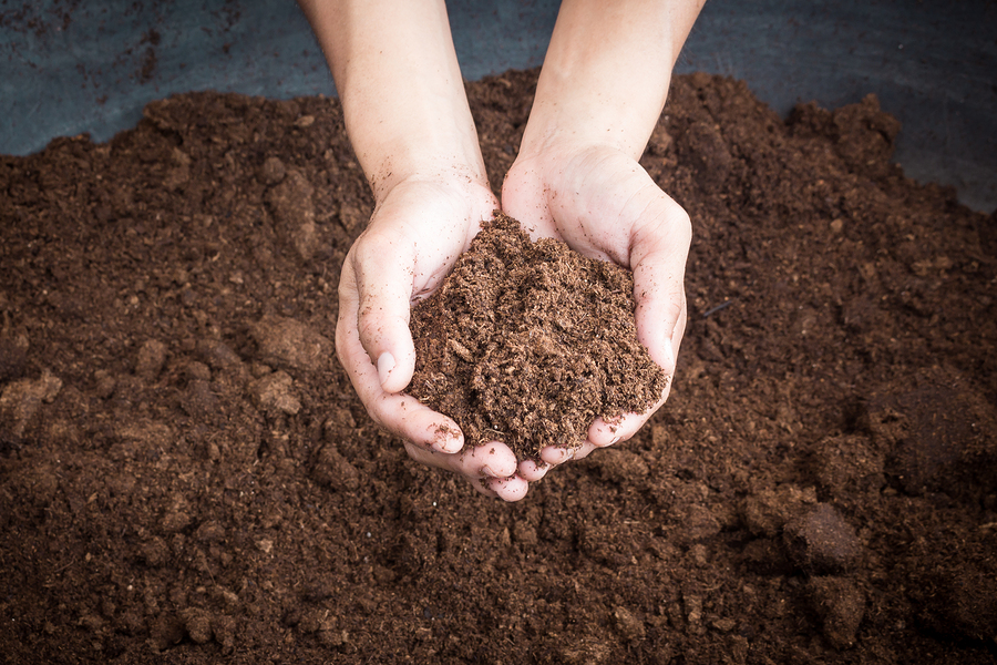 Unlocking the living soil