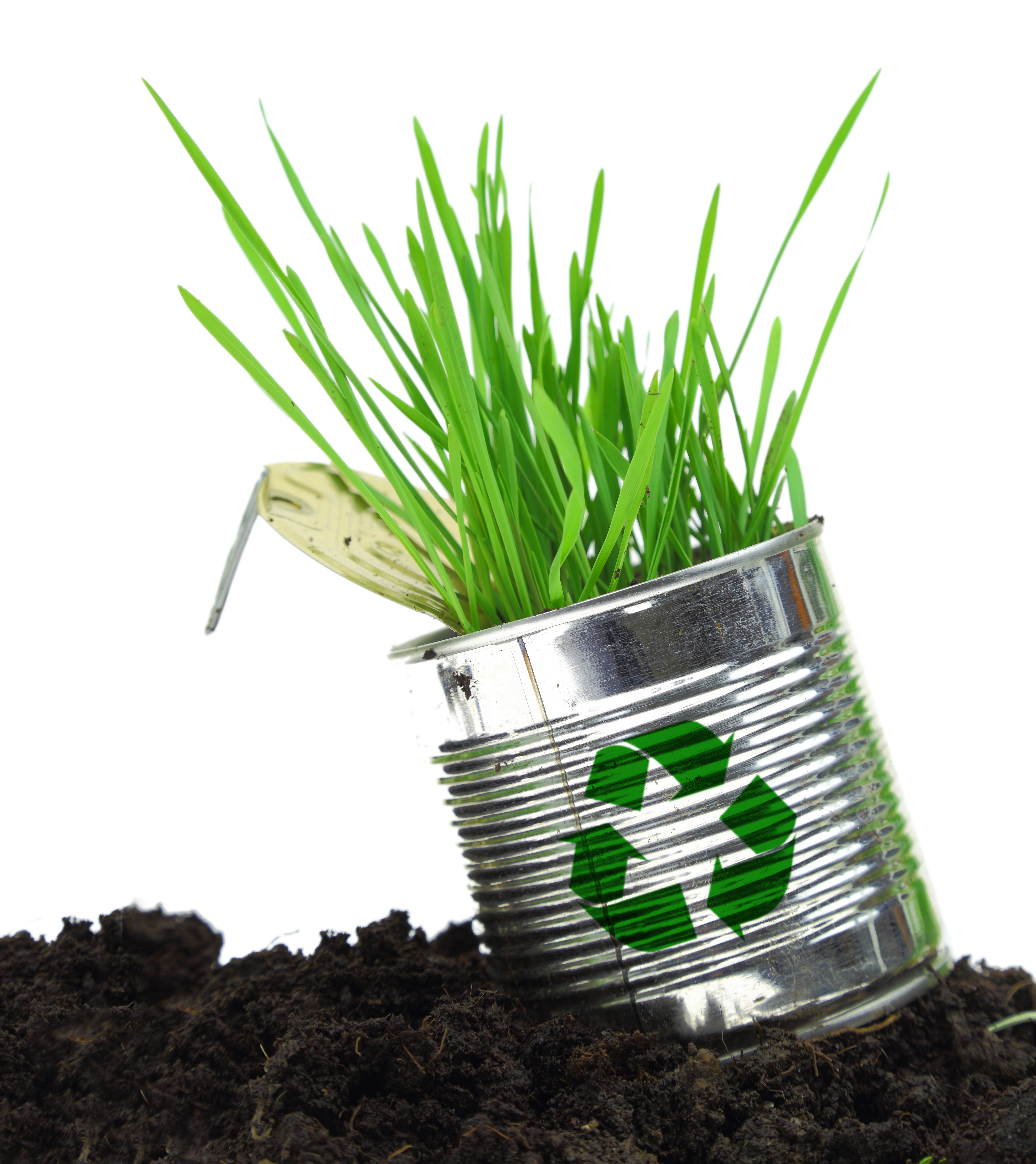 Is organic fertilizer right for you?