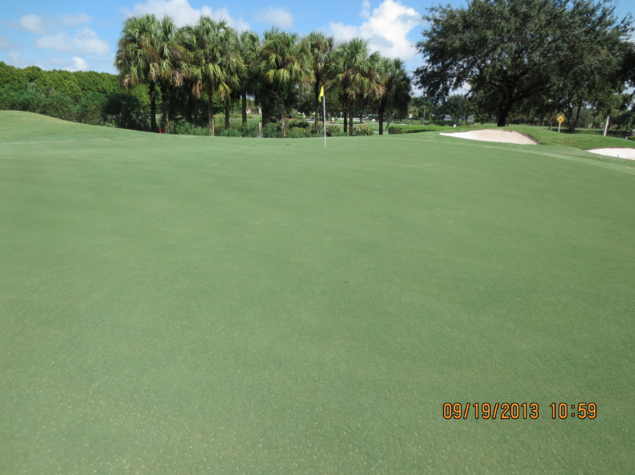 Holganix Case Studies: Consistency and Uniformity on Florida Golf Courses