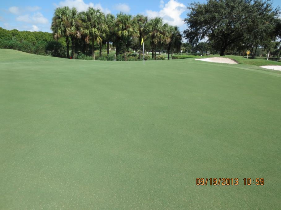 Holganix Case Studies: Consistency and Uniformity on Florida Golf Courses
