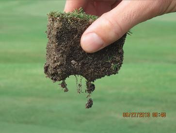 Holganix golf roots