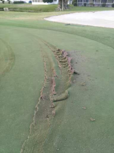 injured turf