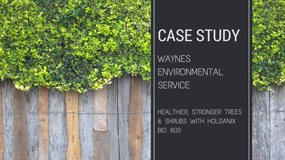 Waynes environmental