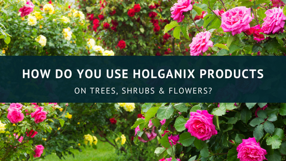 How Do You Use Holganix Products?