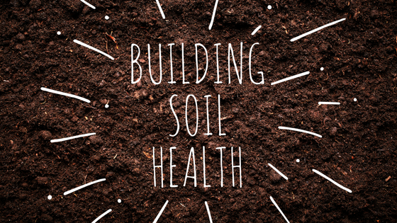 build soil health