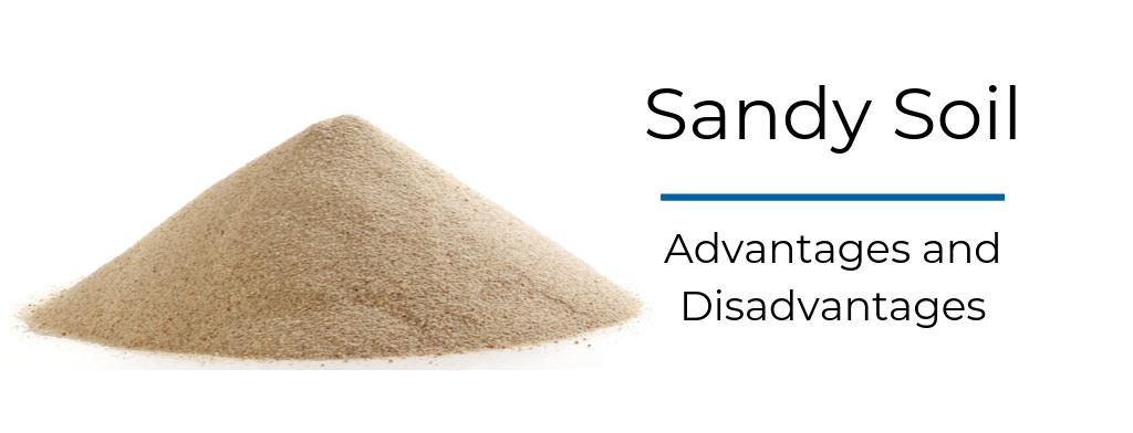 sandy soils