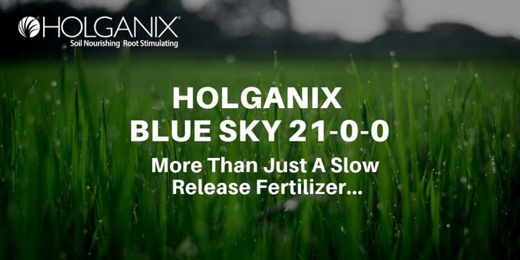 Slow release fertilizer