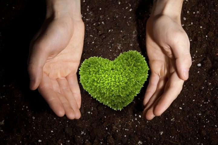 Heart_soil.jpg