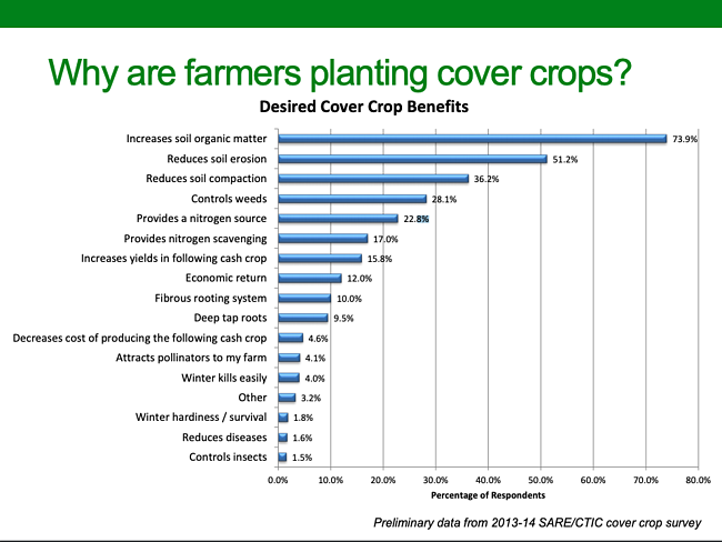 why cover crops