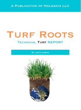 Turf root