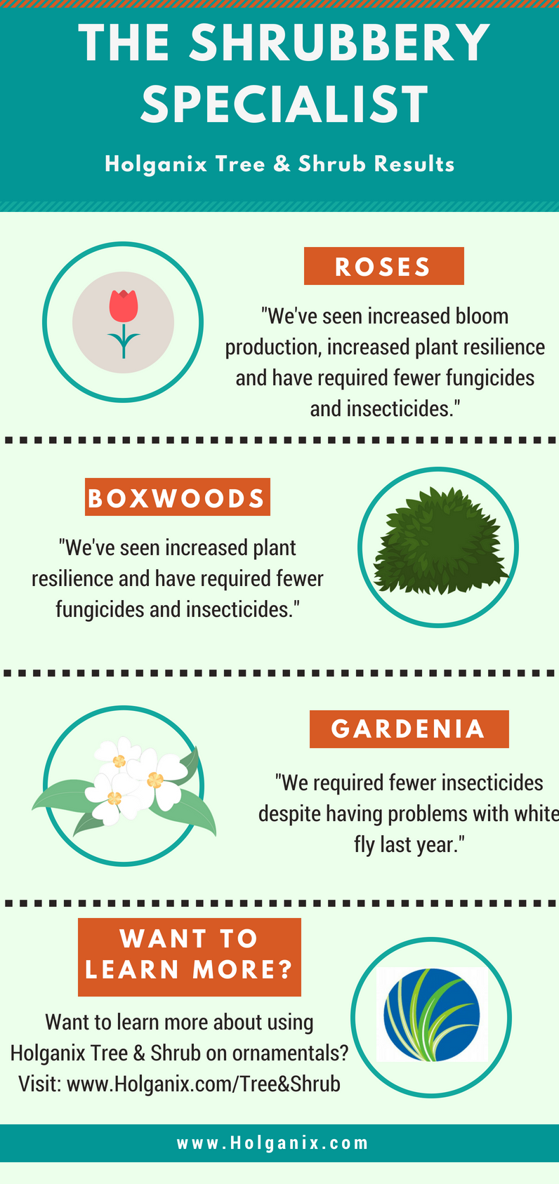 The Shrubbery Specialist Infographic