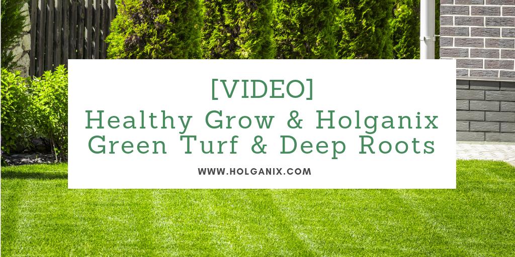Healthy Grow & Holganix