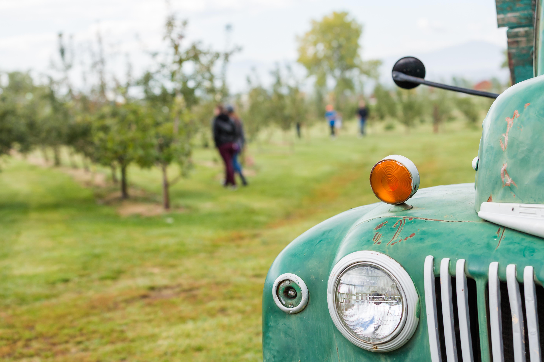 apple_farm