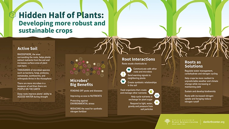 danforth-infographic-soil-health