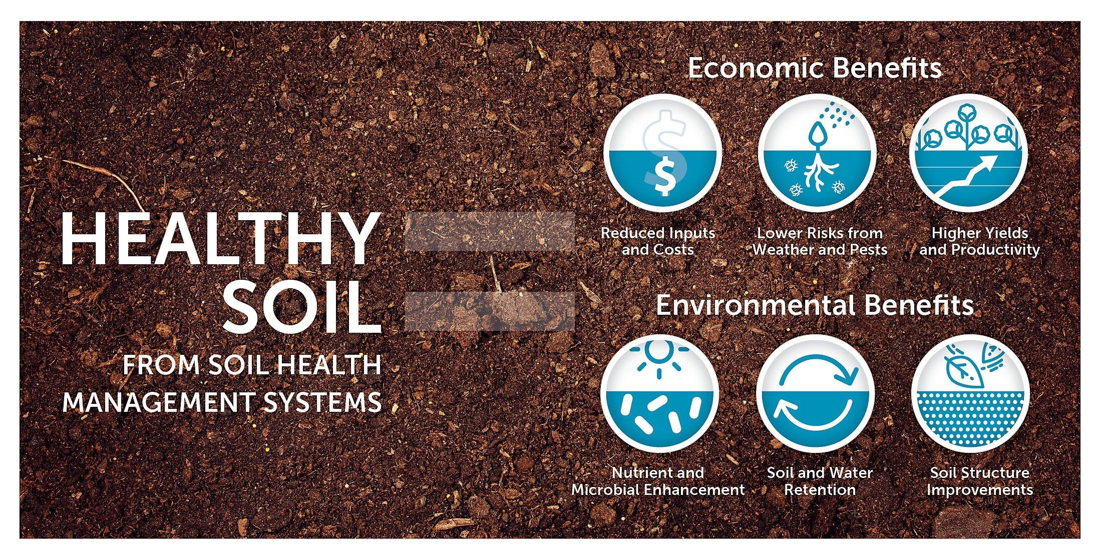 healthy_soil_HR-soil-seeding