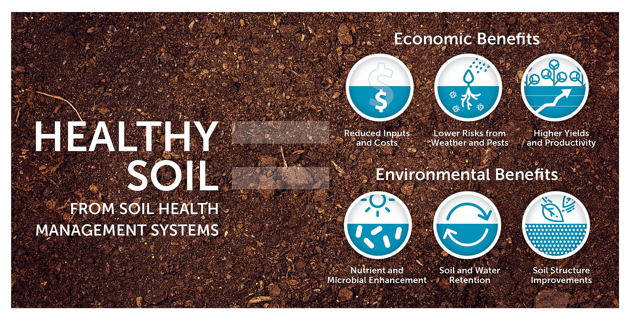 healthy_soil_HR-soil-seeding