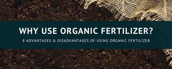 organic_Fertilizer.png