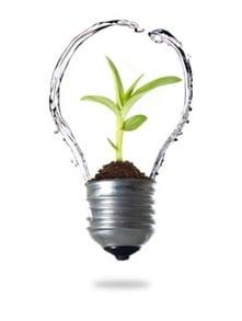 Water__Plant__Lightbulb.jpg