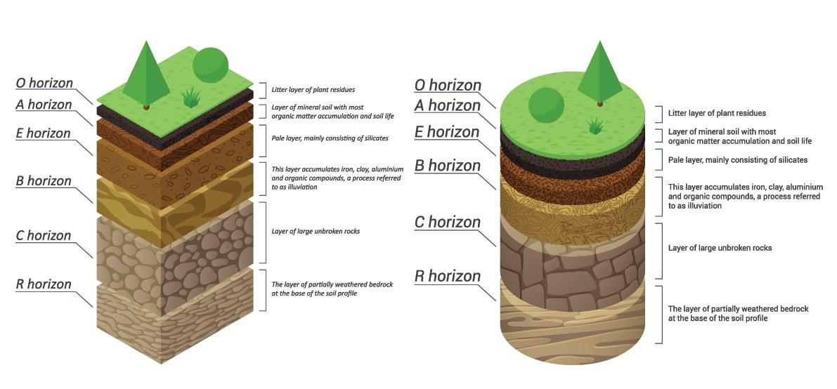 soil profile layers