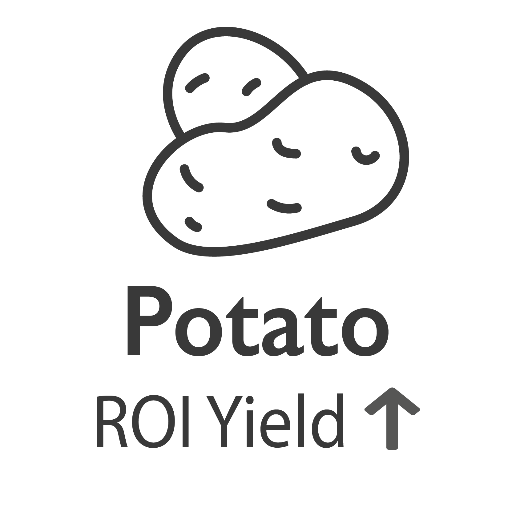 Potato ROI YIeld