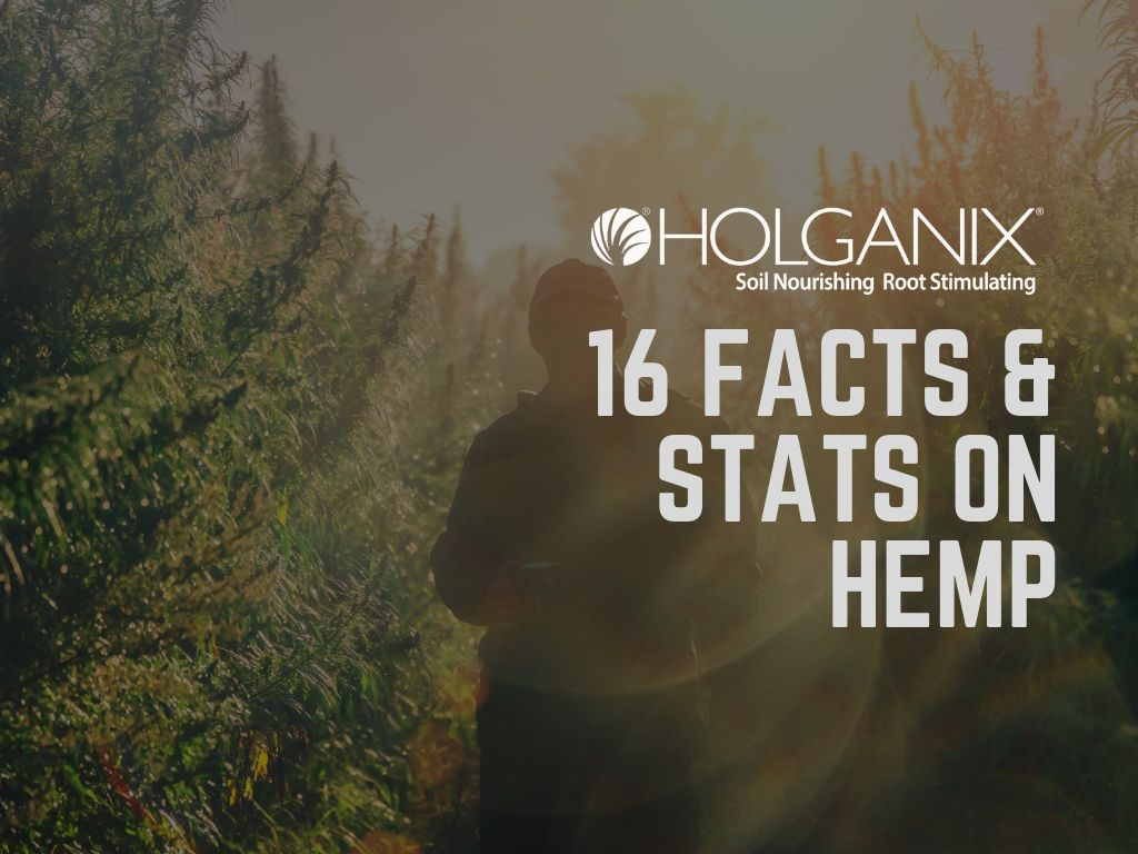 16 facts & stats on hemp