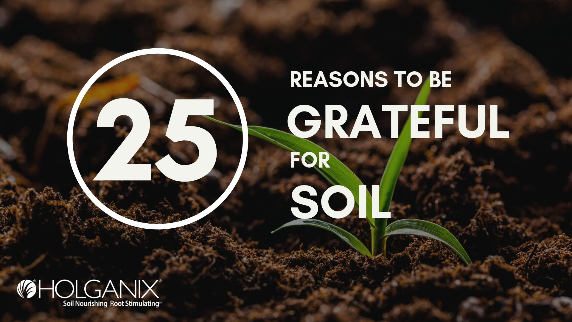25 Reasons To Be Grateful For Soil: Why Soil Is Important [SlideShare]