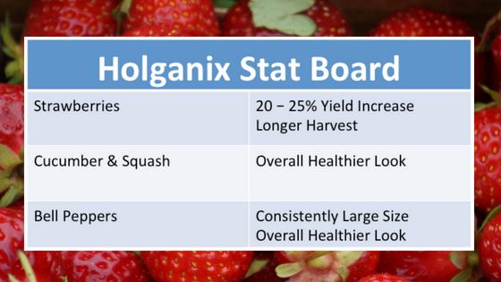 Holganix Case Study: 20% Yield Increase, Overall Healthier Crop