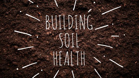 How Do You Build Soil Health?