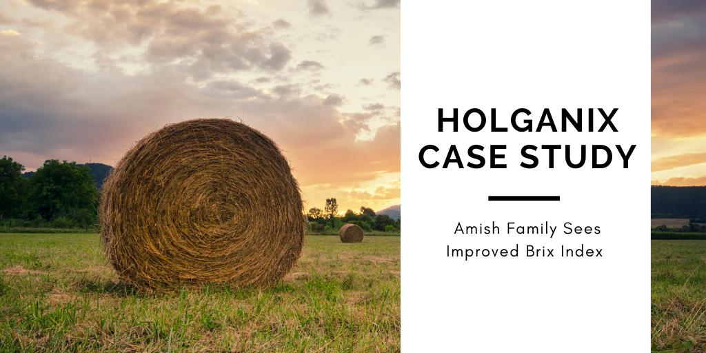 Holganix Case Study: Amish Family Sees Improved Brix Index