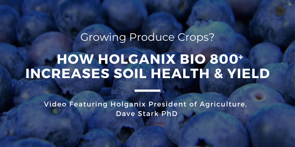 Growing Produce? How Holganix Bio 800 Increases Soil Health & Yield