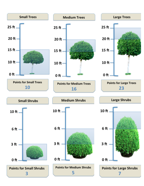 Conducting Tree and Shrub Estimates: When and How?
