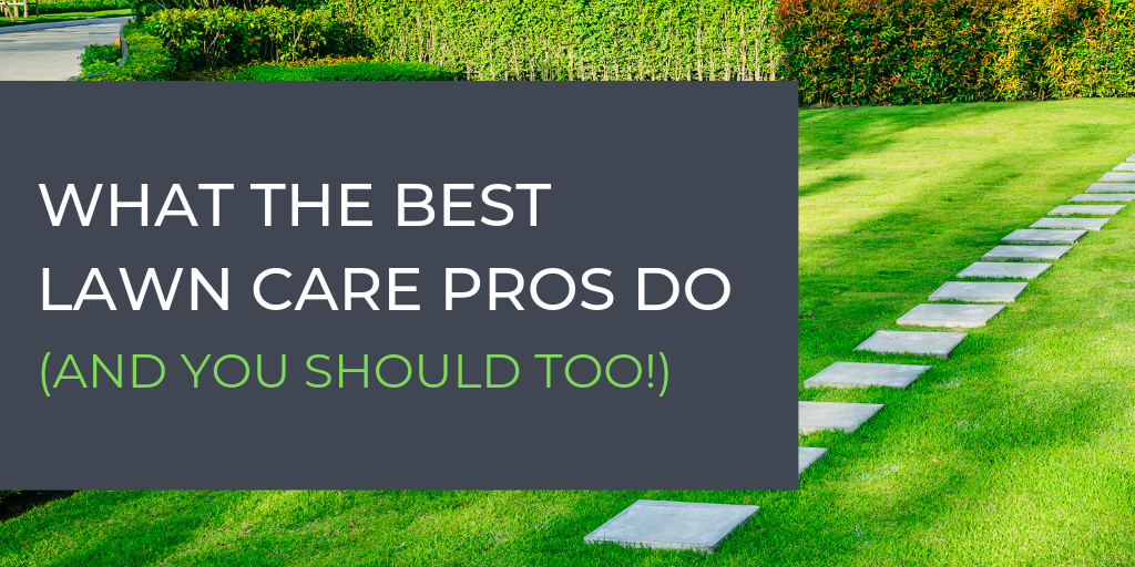 What The Best Lawn Care Pros Do (And You Should Too!)