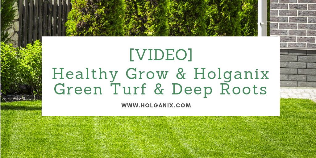 Healthy Grow & Holganix