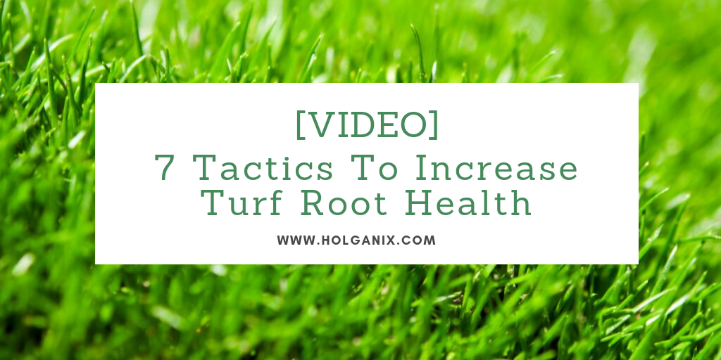 Turf root health