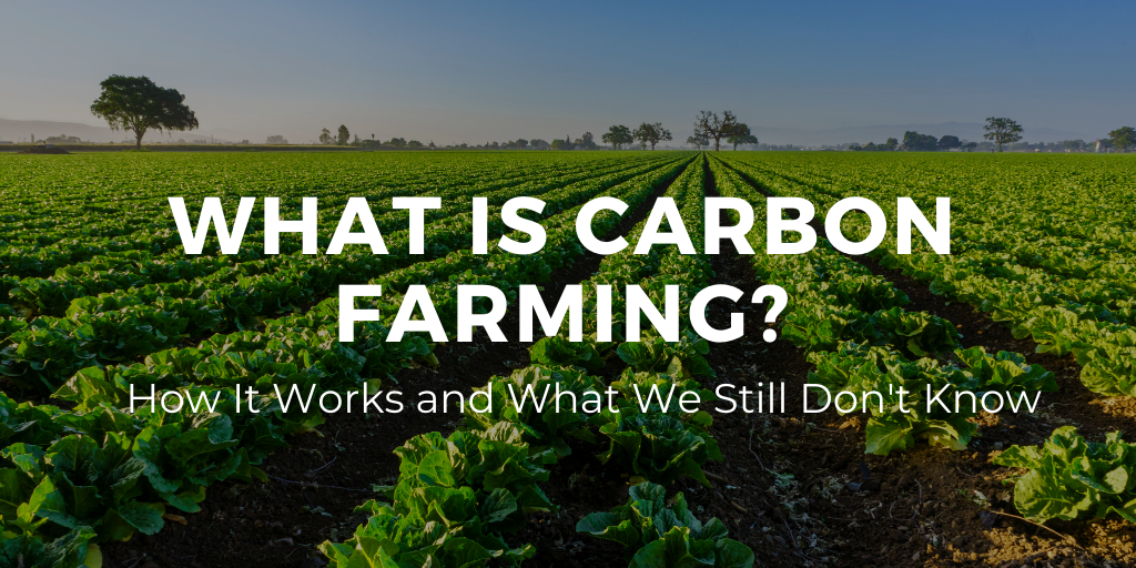 What is Carbon Farming: How It Works and What We Still Don't Know.