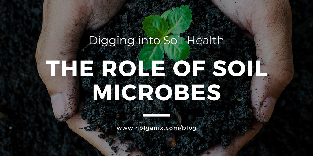 Digging into Soil Health: The Role of Soil Microbes [VIDEO]