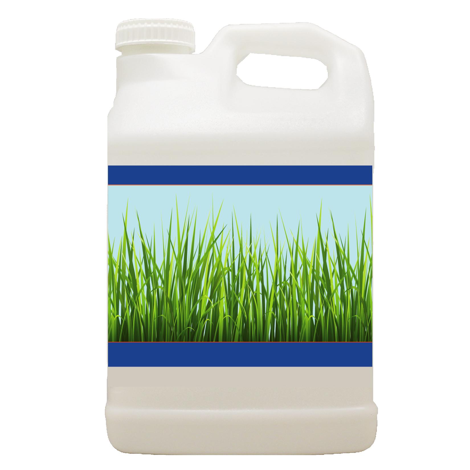 lawn jug