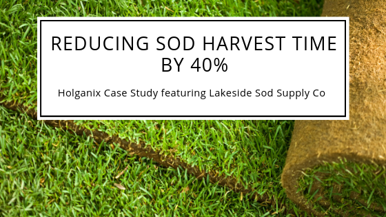 lakeside sod