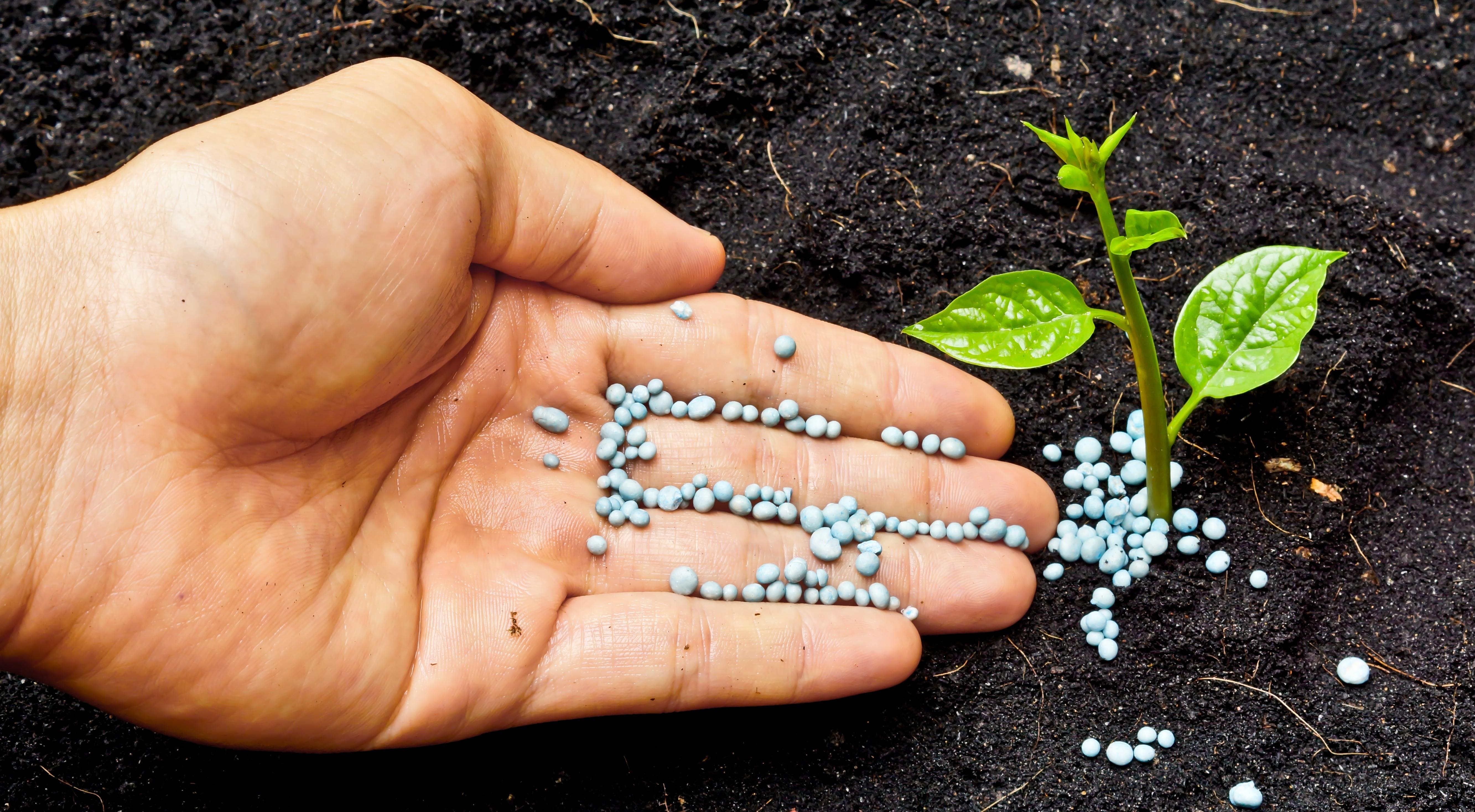 summer_fertilizer