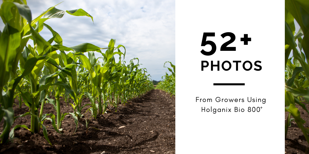 52+ Photos from Farmers Using Holganix Bio 800+