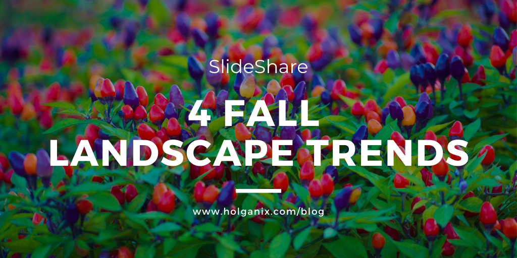 4 Fall Landscape Trends [SlideShare]